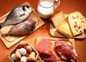 etiquetado alimentos de origen animal