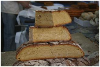 brona de maiz