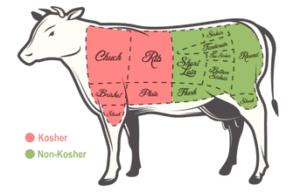 partes kosher y no kosher vacuno