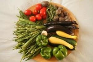 vegetales. nutrientes