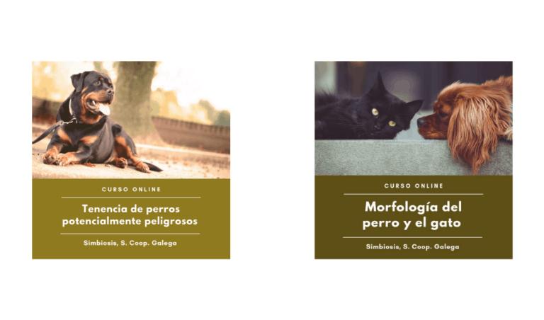 cursos veterinaria mascotas
