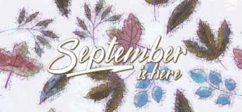 Cursos online septiembre